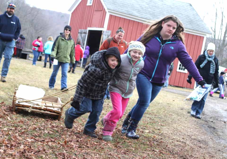 There was no snow on the ground, but the recent cold snap meant there was plenty of ice for harvesting the Hanford Mills Ice Harvest Festival today in East Meredith.  Here, Freddy Cargill, Ella Gerster and Amber Cargill, Davenport, pull a freshly cut block of ice from the pond to the ice house in the East Meredith mill's annual celebration of winter farmtime fun.  The fun continues until 4 p.m. (Ian Austin/AllOTSEGO.com)