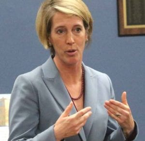 Zephyr Teachout in Otsego County in February.